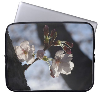 Two lonely cherry blossoms and sunlight computer sleeves