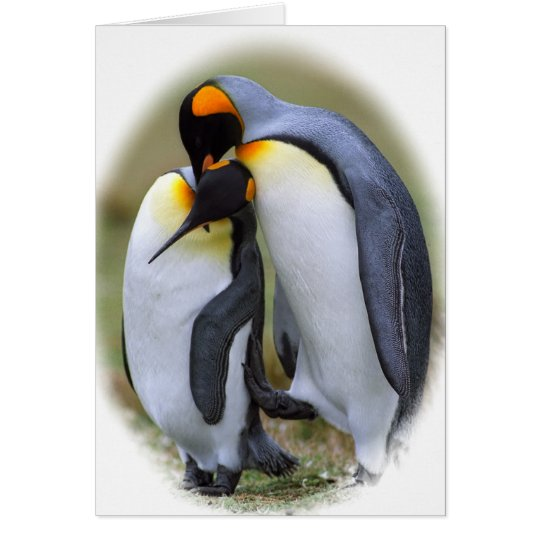 Two love penguins card