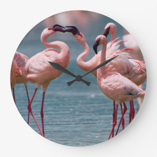 Two Male Lesser Flamingos (Phoenicopterus Minor) Large Clock