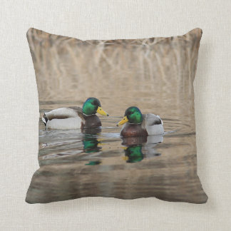 Two mallard drakes and reflections cushion