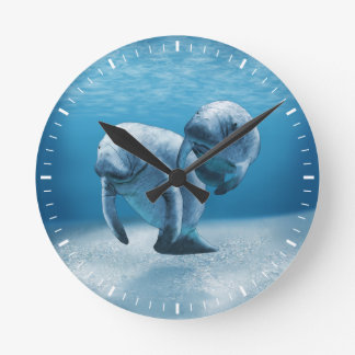 Two Manatees Swimming Round Clock