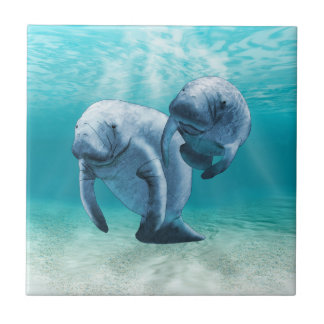 Two Manatees Swimming Small Square Tile