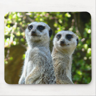 Two Meerkats Mouse Mat