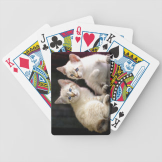 Two Mekong Bobtail Tabby Point Kittens Bicycle Playing Cards