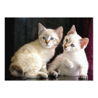 Two Mekong Bobtail Tabby Point Kittens 13 Cm X 18 Cm Invitation Card