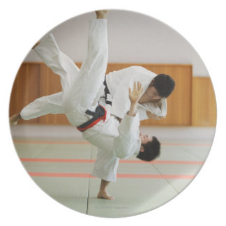 Two Men Competing in a Judo Match 3 Dinner Plate