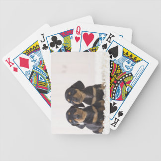Two Mini Dachshund Sitting Bicycle Playing Cards