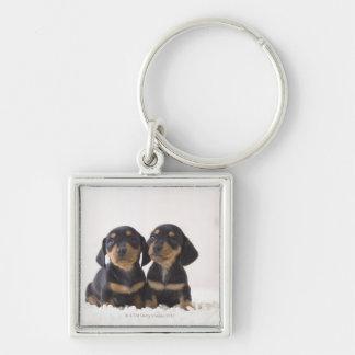Two Mini Dachshund Sitting Key Ring