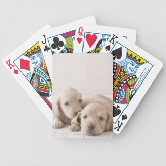 Two Miniature Dachshund Bicycle Playing Cards
