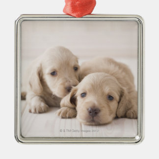 Two Miniature Dachshund Christmas Ornament