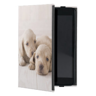 Two Miniature Dachshund Cover For iPad Mini