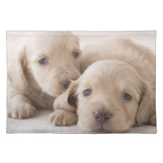 Two Miniature Dachshund Placemat