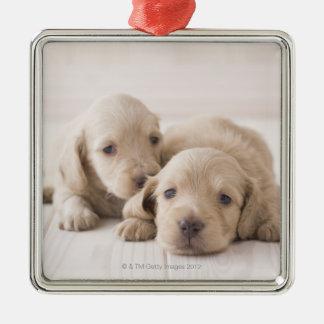 Two Miniature Dachshund Silver-Colored Square Decoration