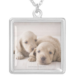 Two Miniature Dachshund Silver Plated Necklace
