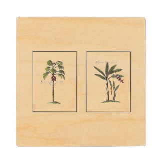 Two Miniature Framed Palm Trees Wood Coaster