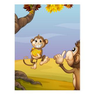 Two monkeys beside the big tree postcard