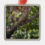 Two Monkeys In A Tree Christmas Ornament