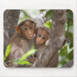 Two Monkeys In A Tree Mouse Mat