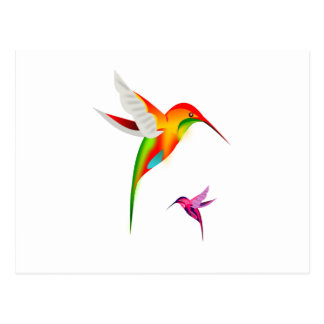 Two Multicolored Humming Birds in Flight Postcards