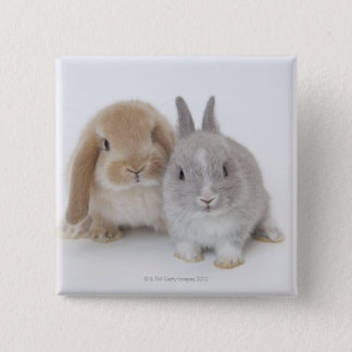 Two Netherland Dwarf and Holland Lop bunnies 15 Cm Square Badge
