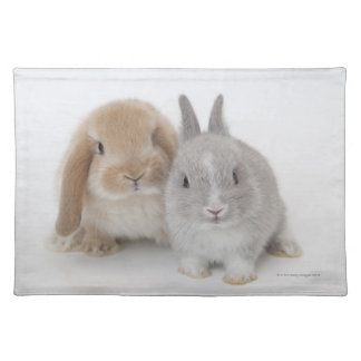 Two Netherland Dwarf and Holland Lop bunnies Placemat
