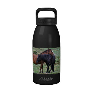 Two New Forest Pony Friends, Wild Horses - England Drinking Bottle