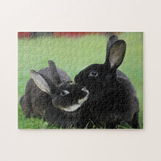 Two Nuzzling Rex Rabbits - Animal Photography Jigsaw Puzzle