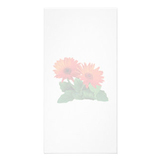 Two Orange Gerbera Daisies Personalized Photo Card