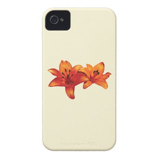 Two Orange Lilies iPhone 4 Covers
