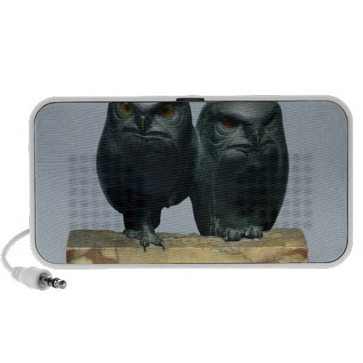 Two Owls, 1903-04 Mp3 Speakers