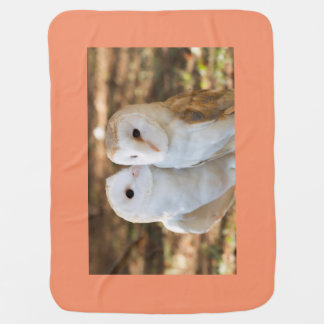 two owls friends baby blanket