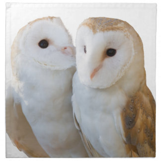 two owls friends napkin