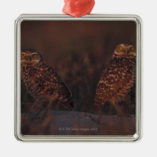 Two Owls on Sand Silver-Colored Square Decoration