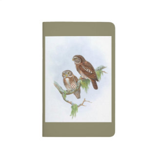 Two owls sitting in a tree. Vintage drawing Journals