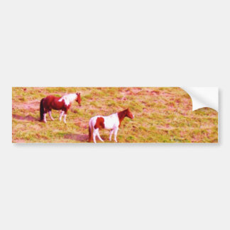 Two Painted Horses Bumper Sticker