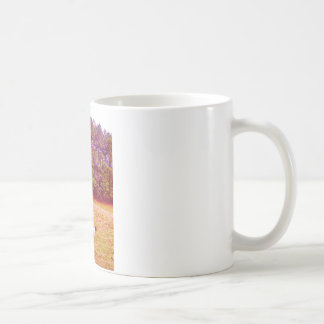 Two Painted Horses Mugs