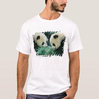 Two pandas eating bamboo together, Wolong, T-Shirt
