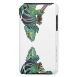 Two Panther Chameleons Nosy Be (Furcifer) Barely There iPod Case