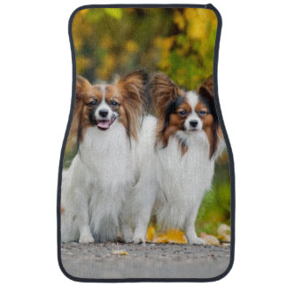 Two Papillon dogs in autumn Car Mat
