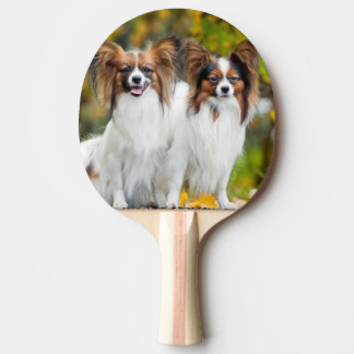 Two Papillon dogs in autumn Ping Pong Paddle