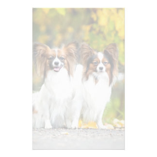 Two Papillon dogs in autumn Stationery