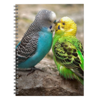 Two Parakeets Spiral Notebook