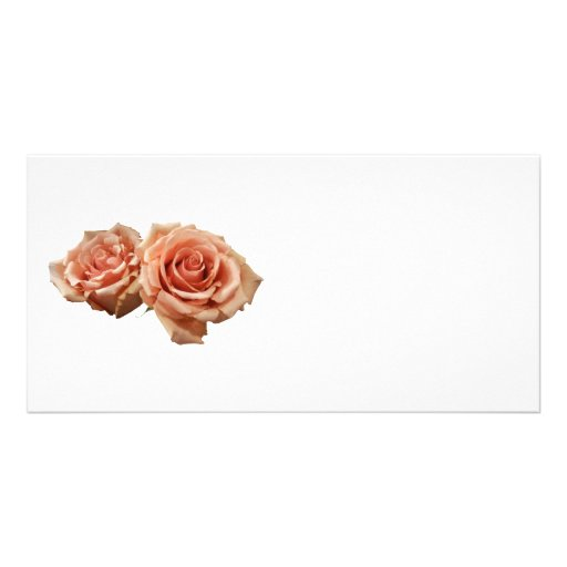 Two Peach Roses Picture Card