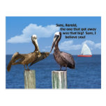 Two Pelicans and a Fish Story Postcard