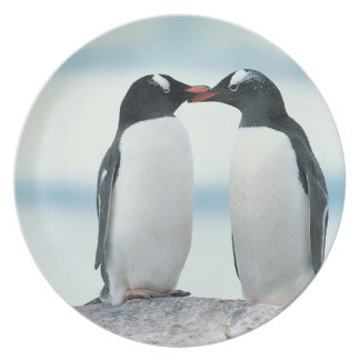 Two Penguins touching beaks Plate