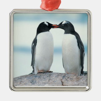 Two Penguins touching beaks Silver-Colored Square Decoration