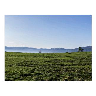 Two people walk through a green field postcard