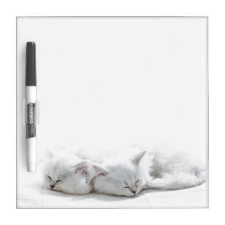 Two Persian Kittens Dry Erase Board