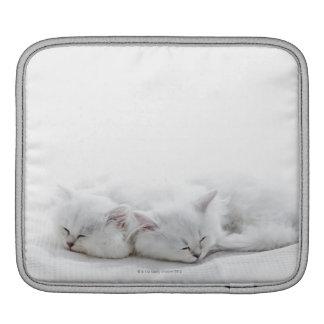 Two Persian Kittens iPad Sleeve