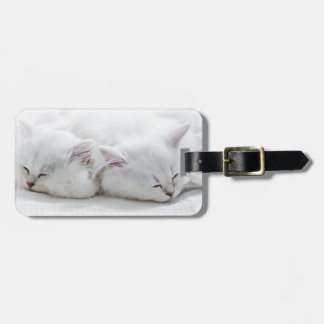 Two Persian Kittens Luggage Tag